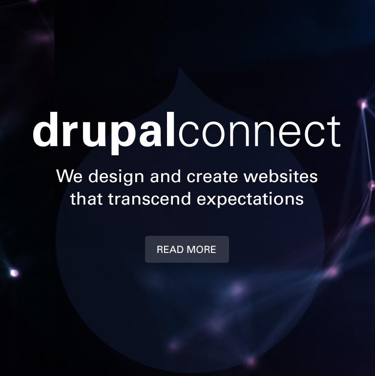 Drupal Connect's Services