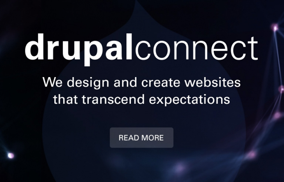 Drupal Connect's Services