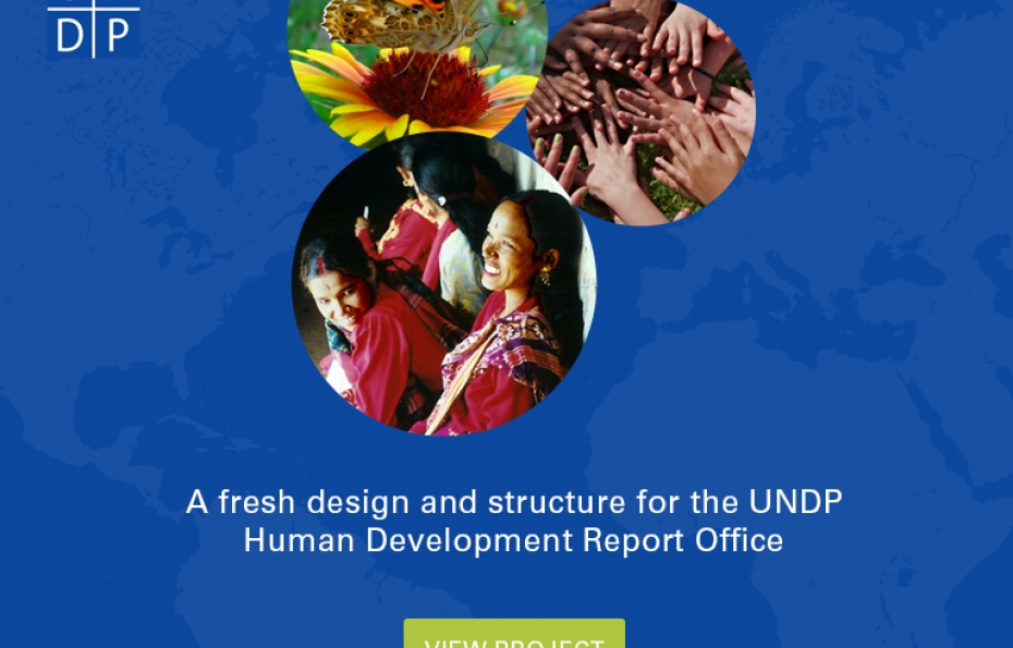 View the UNDP Project